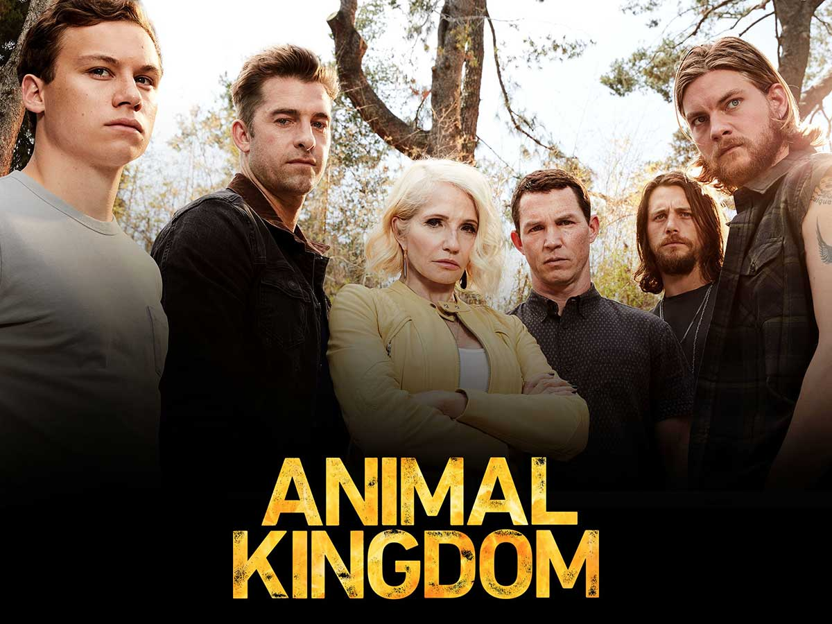 Animal Kingdom TV Series