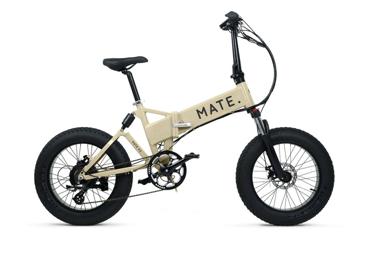 Mate X Electric Bike